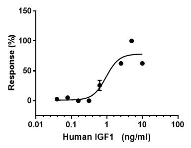 Functional Studies - Recombinant human IGF1 protein (Active) (ab270062)