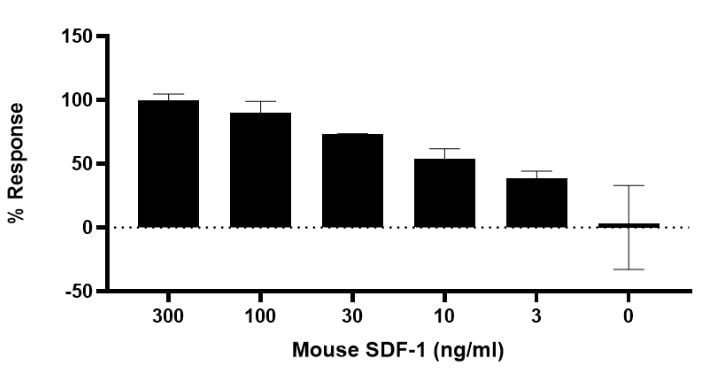Functional Studies - Recombinant mouse SDF1 protein (ab270067)