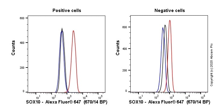 Flow Cytometry - Alexa Fluor® 647 Anti-SOX10 antibody [SP267] (ab270151)