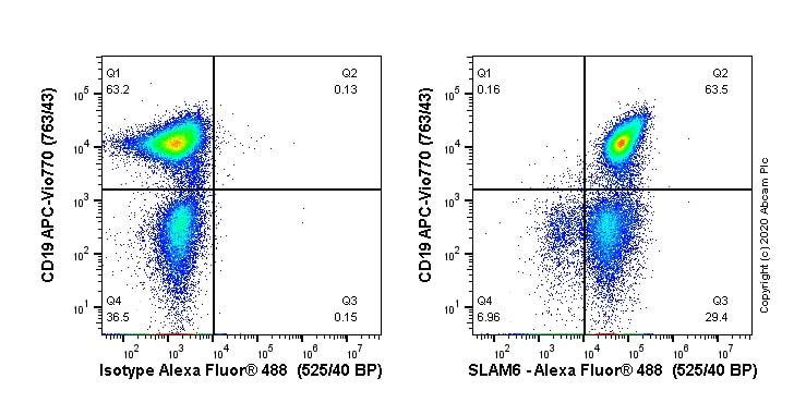 Flow Cytometry - Alexa Fluor® 488 Anti-SLAMF6 antibody [EPR23122-130] (ab270172)