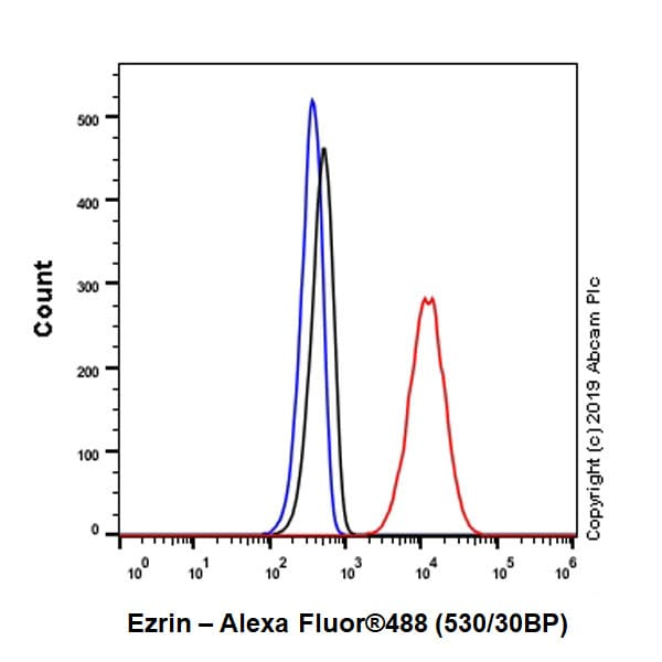 Flow Cytometry - Anti-Ezrin antibody [EPR23353-55] (ab270442)