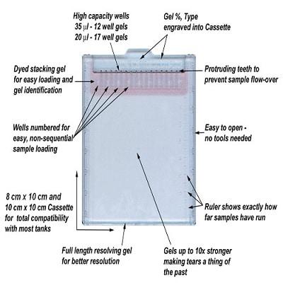 SDS-PAGE - TEO-Tricine Precast Gels - RunBlue™ (4-20%, 2-well, 10x10cm) (ab270461)