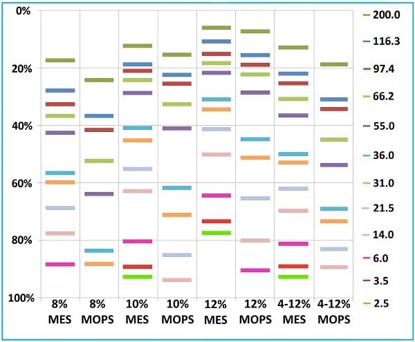 SDS-PAGE - Bis-Tris Precast Gels - RunBlue™ (4-12%, 17-well, 10x10cm) (ab270469)