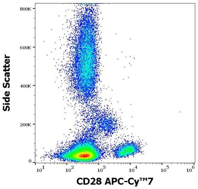 Flow Cytometry - APC/Cy7® Anti-CD28 antibody [CD28.2] (ab270676)