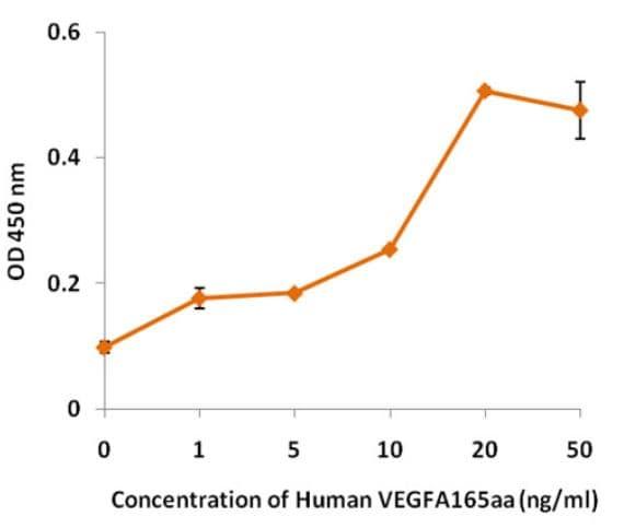 Functional Studies - Recombinant Human VEGFA protein (ab270689)