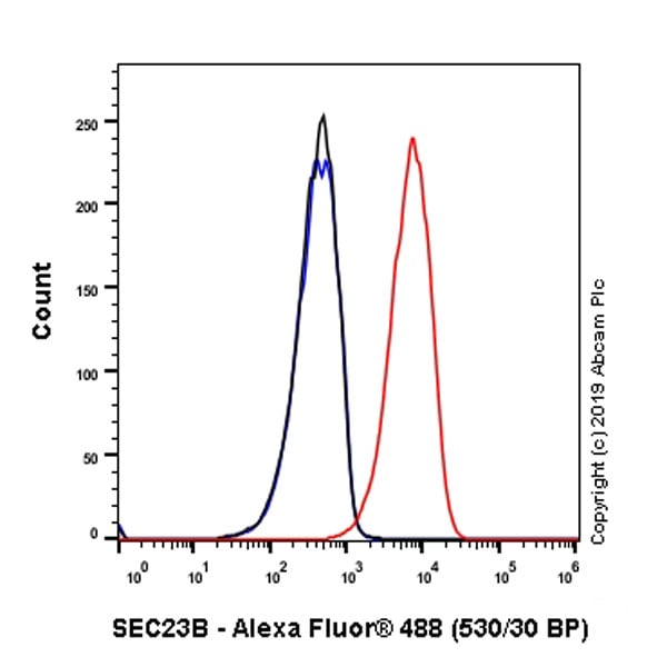 Flow Cytometry - Anti-SEC23B antibody [EPR22723-24] - BSA and Azide free (ab270756)