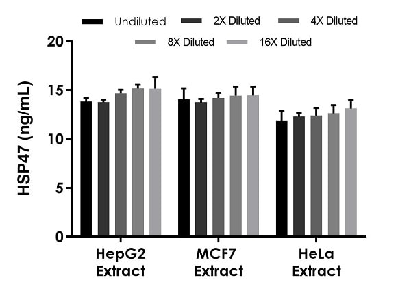 Interpolated concentrations of native HSP47 in human HepG2, MCF7, and HeLa extract samples based on a 25 µg/mL extract load.