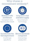 Alexa Fluor® 488 Anti-CD39 antibody [EPR22507-48] (ab270916)