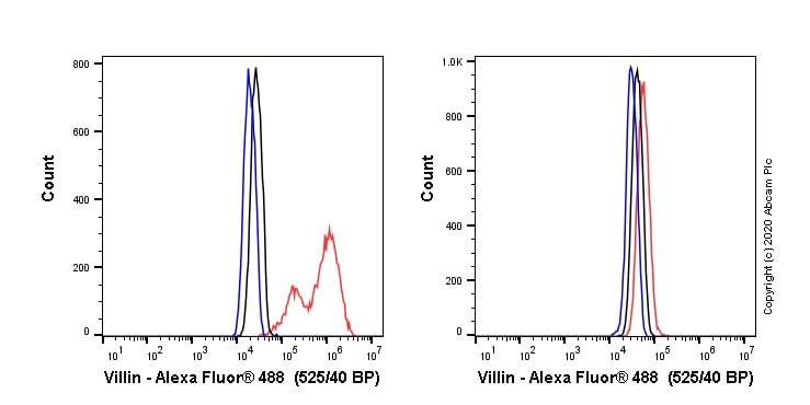Flow Cytometry - Alexa Fluor® 488 Anti-Villin antibody [SP145] (ab270921)
