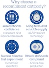 Alexa Fluor® 647 Anti-Villin antibody [SP145] (ab270922)