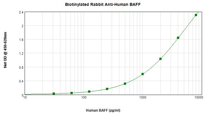 ELISA - Biotin Anti-BAFF antibody (ab271214)