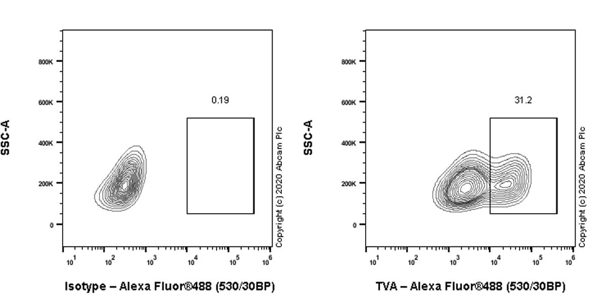 Flow Cytometry - Anti-TVA antibody [PICA187E] - BSA and Azide free (ab271302)