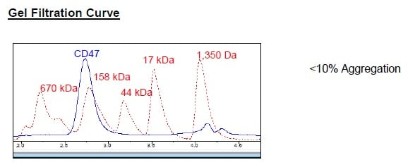 Size Exclusion Chromatography - Recombinant Human CD47 protein (Tagged) (ab271435)