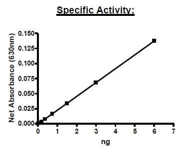 Functional Studies - Recombinant human CD73 protein (Active) (Biotin) (ab271447)