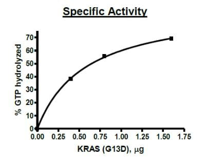 Functional Studies - Recombinant human KRAS (mutated G13D) protein (Active) (ab271580)