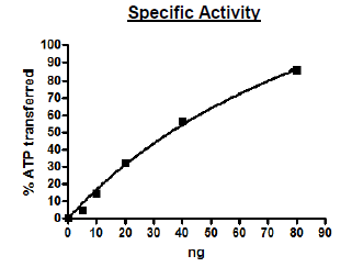 Functional Studies - Recombinant human PKC alpha protein (Active) (ab271714)