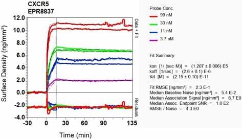 OI-RD Scanning - Anti-CXCR5 antibody [EPR8837] - BSA and Azide free (ab271898)