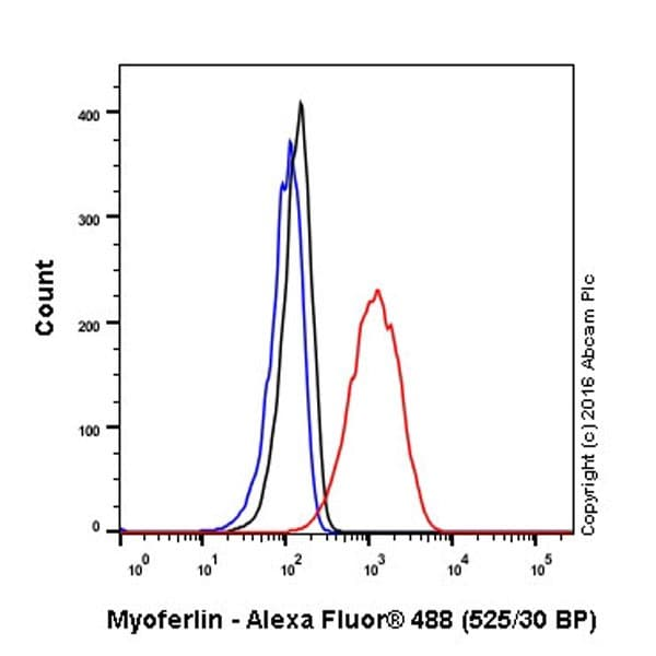 Flow Cytometry - Anti-Myoferlin antibody [EPR18887] - BSA and Azide free (ab271928)