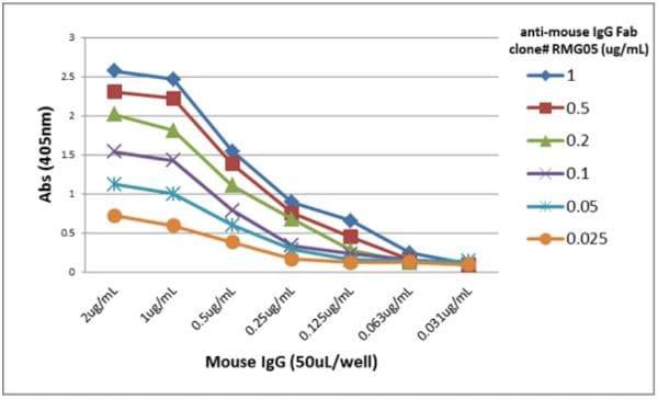 ELISA - Goat monoclonal [RMG05] Anti-Mouse IgG F(ab) (Biotin) (ab272180)