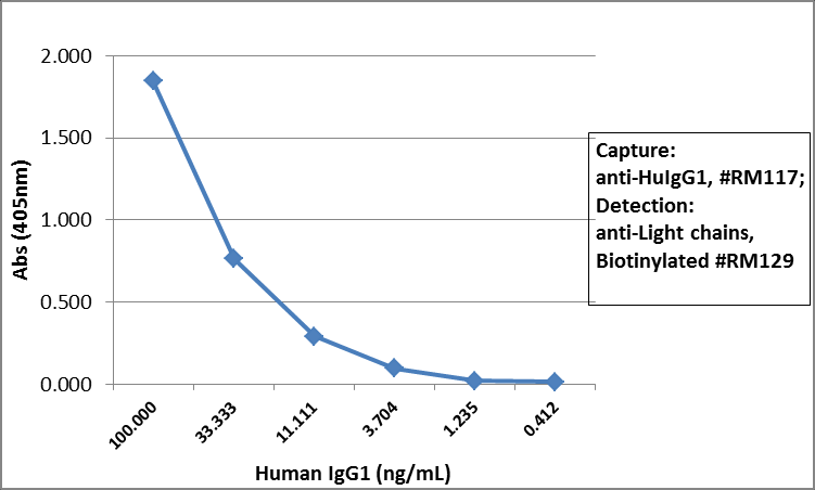 Sandwich ELISA - Rabbit monoclonal RM117 Anti-Human IgG1 heavy chain (Biotin) (ab272183)