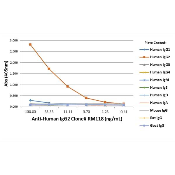 ELISA - Rabbit monoclonal RM118 Anti-Human IgG heavy chain (Biotin) (ab272184)
