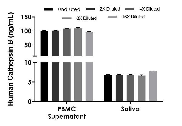 Interpolated concentrations of native Cathepsin B in treated human PBMC cell culture supernatant and male saliva samples.