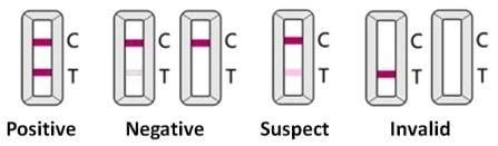 Representative test results