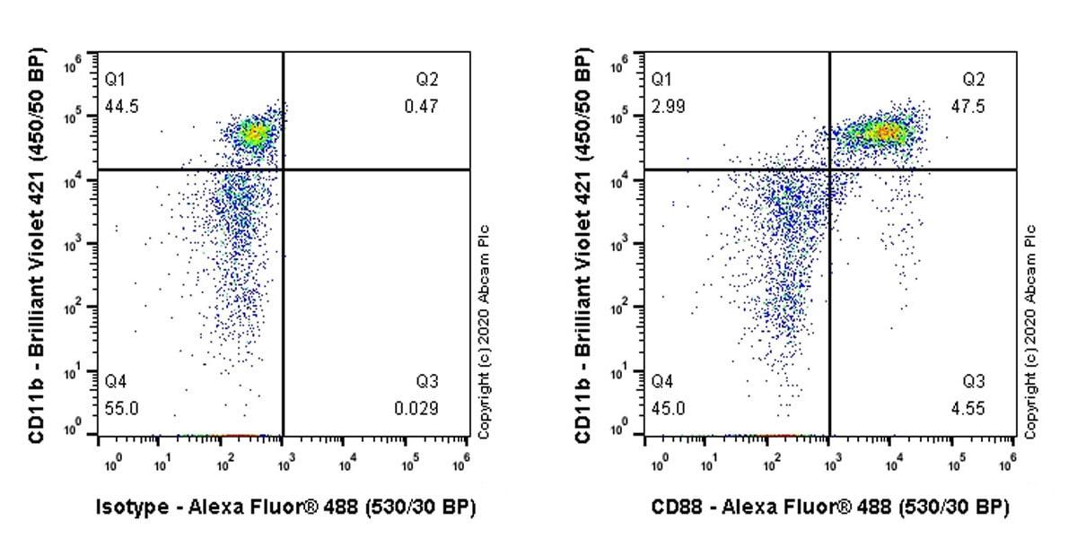 Flow Cytometry - Anti-C5a-R antibody [EPR23278-117] - BSA and Azide free (ab272400)