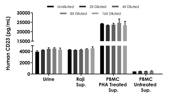Interpolated concentrations of native CD23 in human urine, Raji cell culture supernatant and PBMC cell culture supernatant samples treated with or without 1.5% PHA for 36 hours.