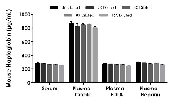 Interpolated concentrations of native Haptoglobin in mouse serum and plasma samples.