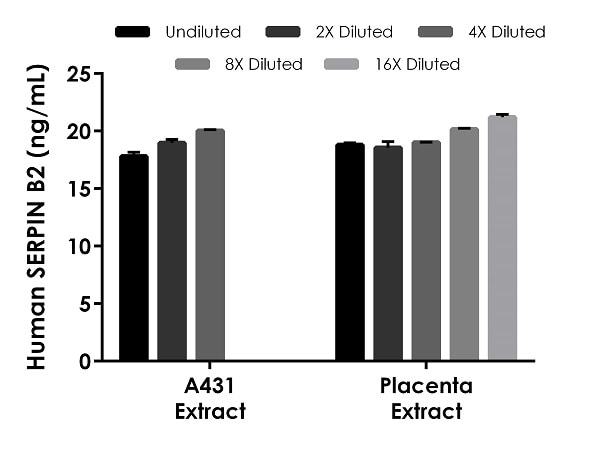 Interpolated concentrations of native Serpin B2 in human A431 cells