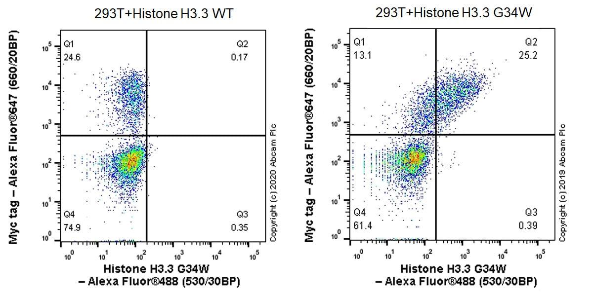 Flow Cytometry - Anti-Histone H3.3 (mutated G34W) antibody [EPR23581-39] - ChIP Grade (ab272691)