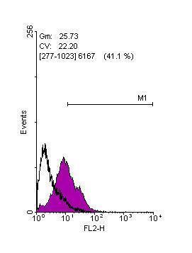 Flow Cytometry - Anti-KLF4 antibody (ab272860)