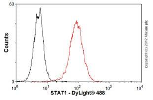 Flow Cytometry - Anti-STAT1 antibody [SM1] (ab3987)