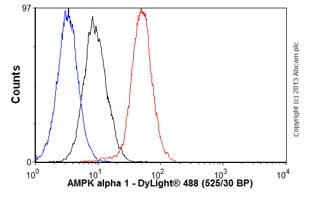 Flow Cytometry - Anti-AMPK alpha 1 antibody [Y365] (ab32047)