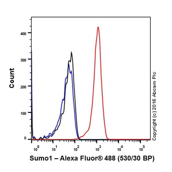 Flow Cytometry (Intracellular) - Anti-Sumo 1 antibody [Y299] - ChIP Grade (ab32058)
