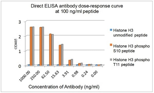 ELISA - Anti-Histone H3 (phospho S10 + T11) antibody [E173] (ab32107)