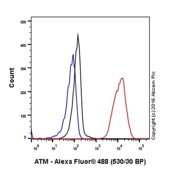 Flow Cytometry - Anti-ATM antibody [Y170] (ab32420)