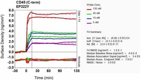 OI-RD Scanning - Anti-CD45 antibody [EP322Y] (ab40763)