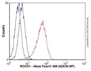 Flow Cytometry - Anti-ROCK1 antibody [EP786Y] (ab45171)