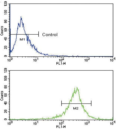 Flow Cytometry - Anti-FGFR4 antibody (ab5481)