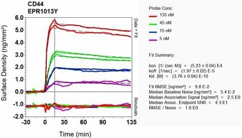 Other - Anti-CD44 antibody [EPR1013Y] (ab51037)