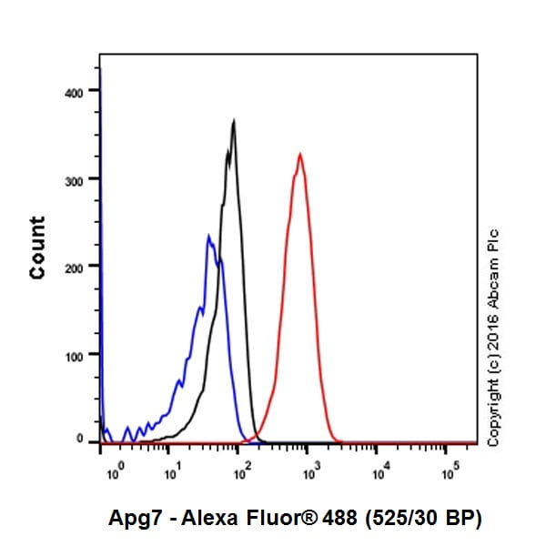 Flow Cytometry - Anti-ATG7 antibody [EP1759Y] (ab52472)