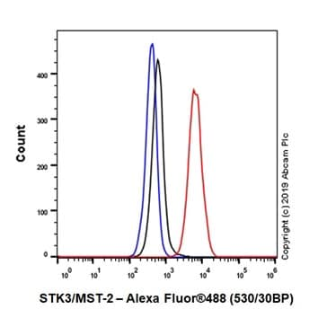 Flow Cytometry - Anti-STK3/MST-2 antibody [EP1466Y] (ab52641)