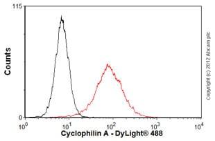 Flow Cytometry - Anti-Cyclophilin A antibody (ab58144)