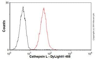 Flow Cytometry - Anti-Cathepsin L + V antibody [33/2] (ab6314)