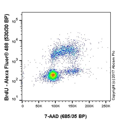 Flow Cytometry - Anti-BrdU antibody [BU1/75 (ICR1)] (ab6326)