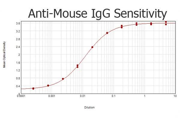 ELISA - Rabbit Anti-Mouse IgG H&L (ab6709)