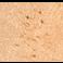 Immunohistochemistry (Formalin/PFA-fixed paraffin-embedded sections) - Donkey Anti-Rabbit IgG H&L (Biotin) (ab6801)