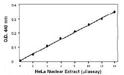 Functional Studies - Histone Acetyltransferase Activity Assay Kit (Colorimetric) (ab65352)